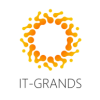 ИТ-Грандс